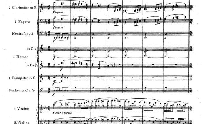 Ennakkotehtävä syyskuun Tunne orkesterisi -luennolle: käyrätorvistiliemessä!